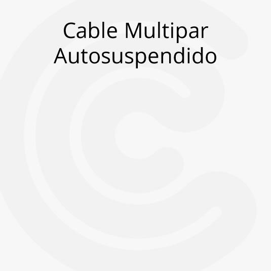 Cable Multipar Autosuspendido con Portante Liviano y Pesado